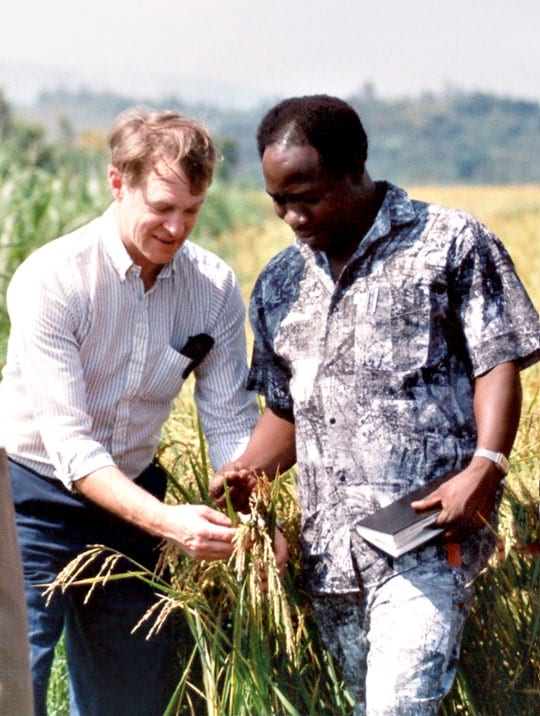 TechnoServe founder Ed Bullard and employee stand in rice field in Rwanda