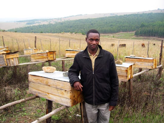 Entrepreneur sits next to one of his 42 beehives in Swaziland