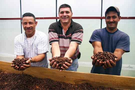 Entrepreneurs holding cocoa beans in Nicaragua