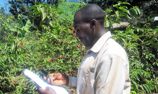 Farmer trainer in Tanzania working within the Coffee Initiative project