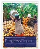 Progress report 2012