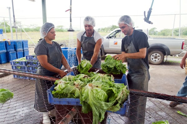 Farmer Cooperative Promotes Education, Nutrition and ...
