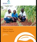 progress report 2013