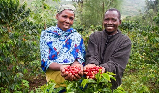 A Fresh Approach for Smallholder Coffee Farmers