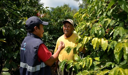 Access to Finance for Central American Coffee Farmers