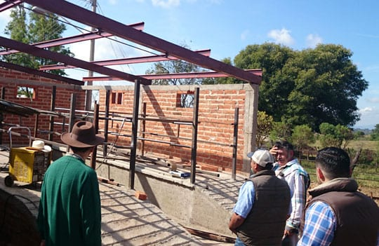 Supporting Mexico's Small-Scale Dairy Farmers