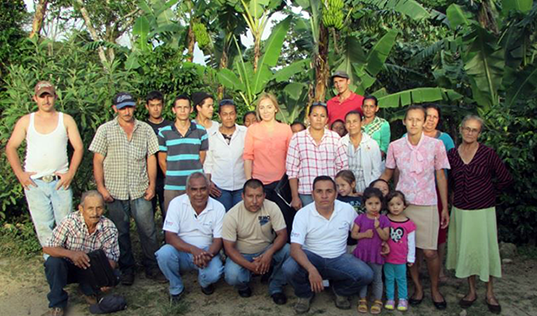 Better Coffee Harvest in Nicaragua