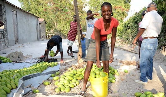 Innovating for Sustainable Impact in Haiti