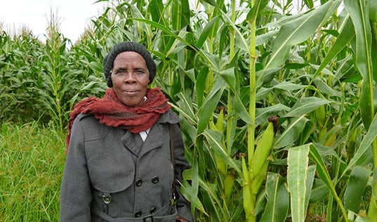 Women in Rural South Africa Take On Climate Change
