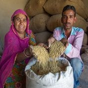 Couple of farmers in India displaying their soy beans