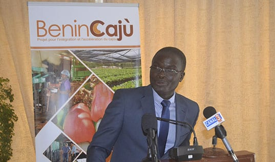 The Launch of BeninCajù: A New Era for Cashew in Benin