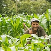Man smiling in field of crops