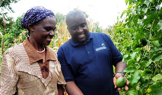 Innovative Partnership Bears Fruit for Farmers