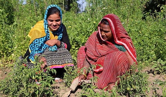 Sowing the Seeds of Women's Empowerment in Rural India