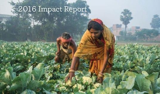 Lasting Solutions: 2016 Impact Report