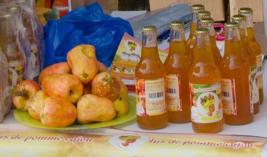 Sweet Benin – A New Value Chain for a Better Future in Benin