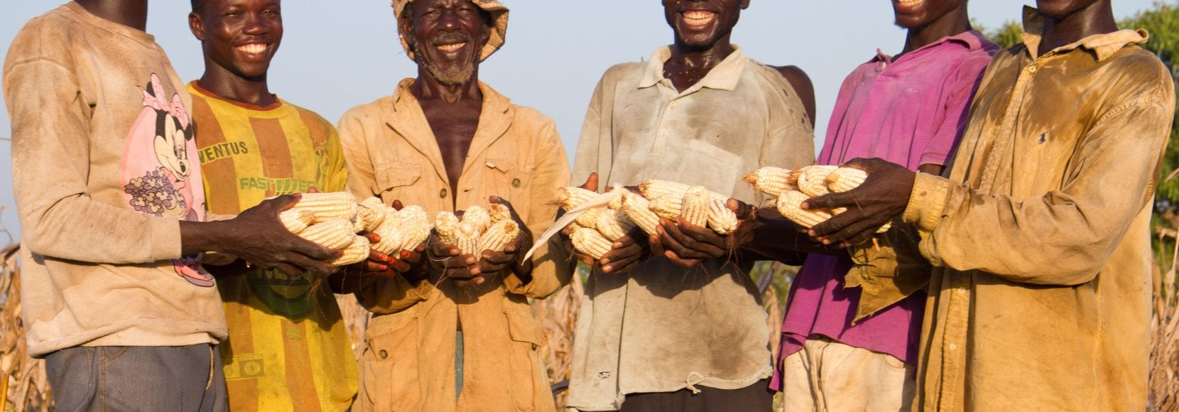 Group of farmers smiling holding corn crops