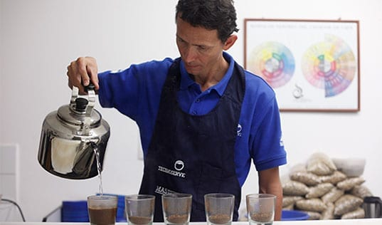 Honduran Coffee Farmers Taste Success