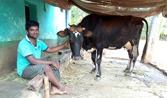 Creating New Vocations for India's Rural Youth