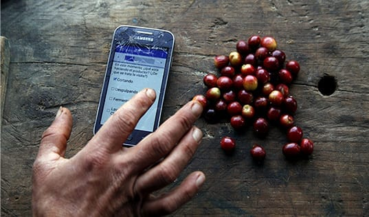 Digitizing Coffee Agronomy Training & Monitoring
