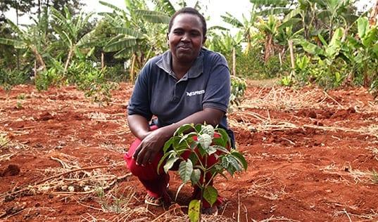 Women Agronomists in Ethiopia