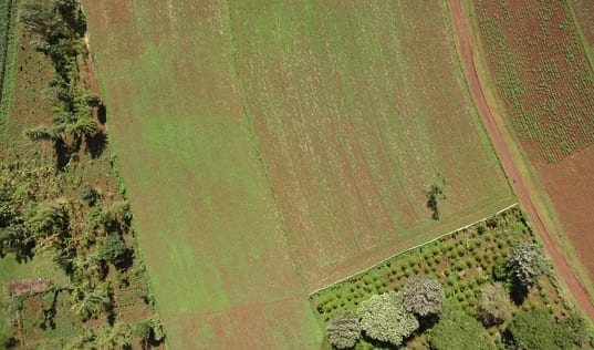 Eyes in the Sky: How Drones and Satellites Can Transform African Agriculture