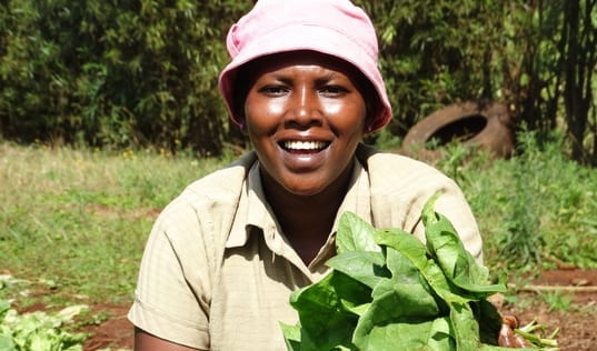 From Produce to Profits: How Mobile Technology Is Strengthening the Livelihoods of Spinach Growers