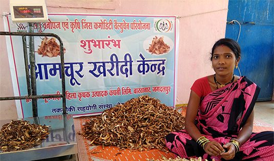 Market Linkages and Value Chain Interventions Bring Hope to India's Remote Communities