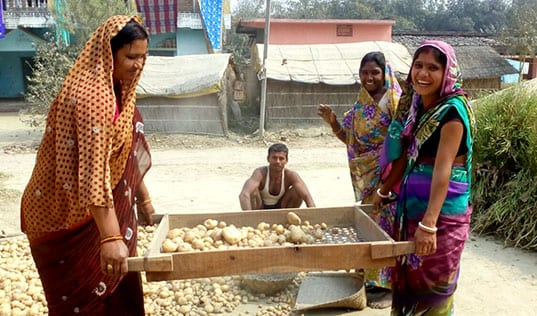 Women Farmers Unearth New Profits from Potatoes