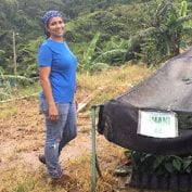 Woman working on coffee plants in Puerto rico