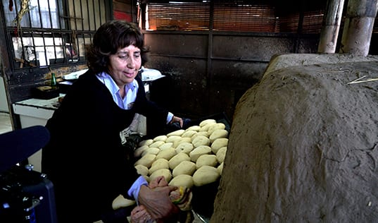 Dreams Come True: Entrepreneurs Emerge in Chile