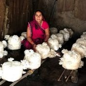 Woman from India with Mushroom Micro Enterprise