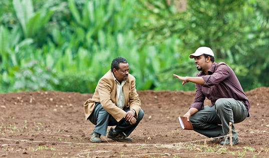 Water-Wise Coffee: Making Sustainable Business Profitable in Ethiopia