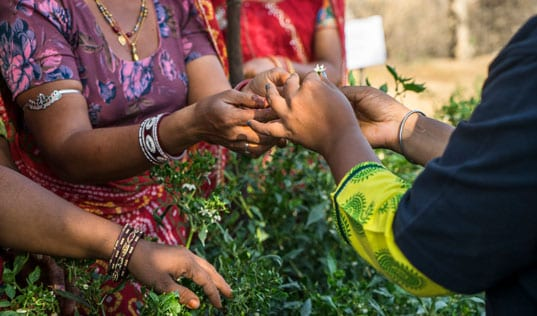 Lasting Impact Spotlight: Rukmani Devi