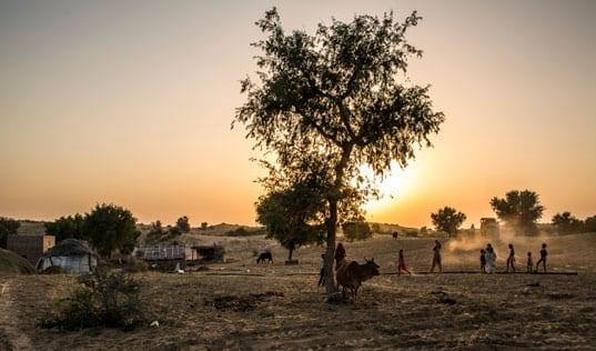 Lasting Impact Spotlight: Bhawarlal Sharma