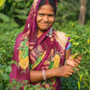 Woman farmer in India