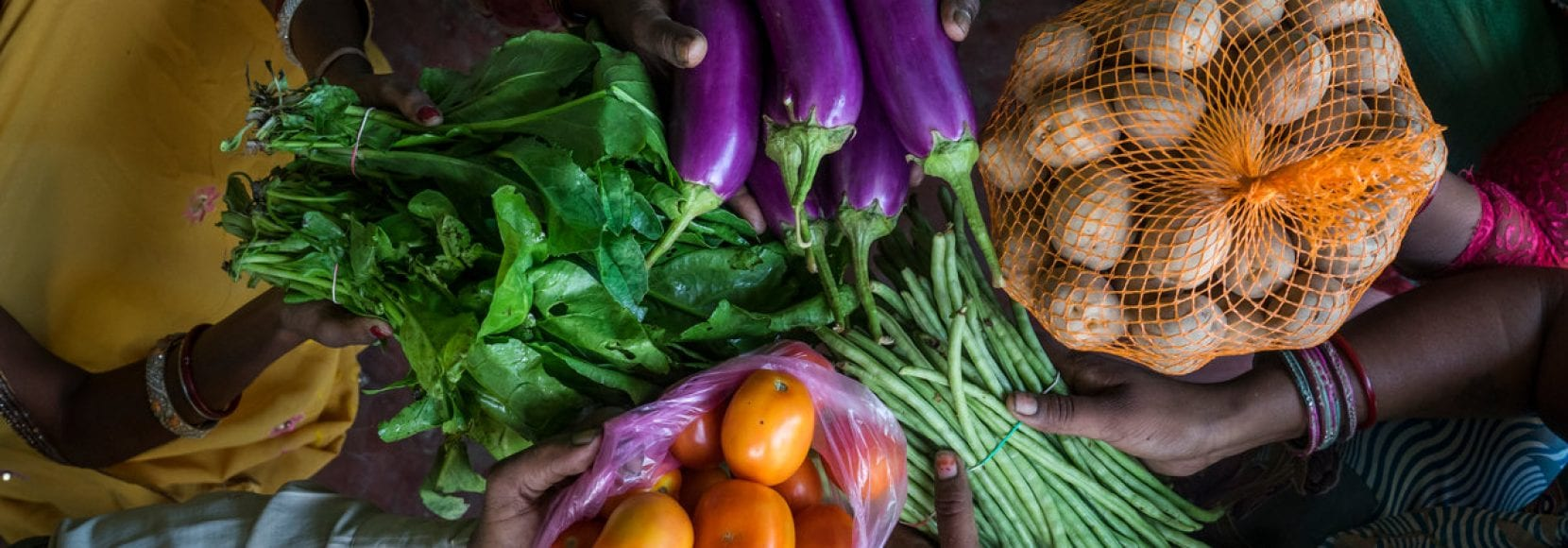 Women farmers hold an assortment of vegetables in Bihar, India