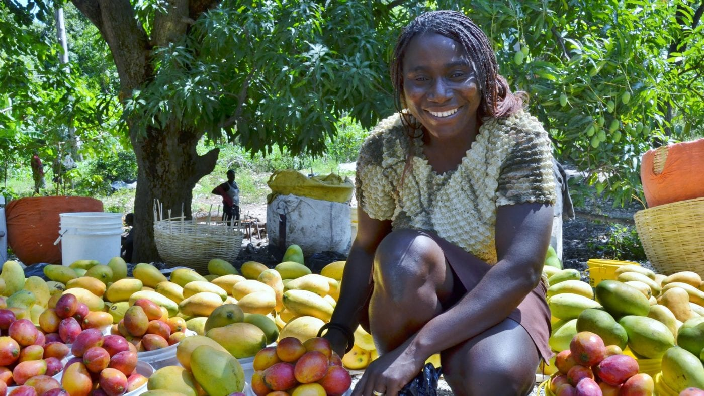 Corporate Sustainability Webpage Video Image Still: Smallholder farmers like this woman mango farmer and participant in The Haiti Hope Project are the primary demographic of TechnoServe's clients