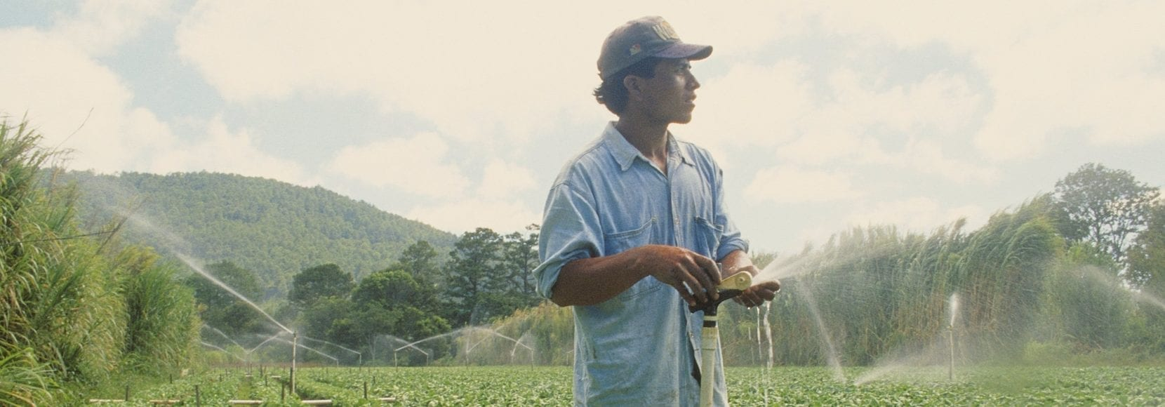 farmer irrigates crops