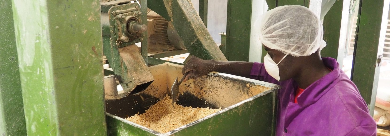 man working at a food processor in Kenya supported by TechnoServe training program SAFE