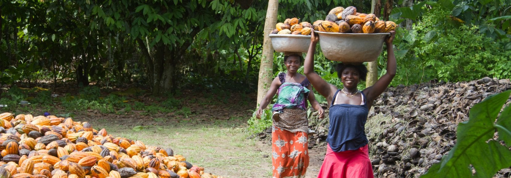 These womeTechnoServe's business solutions to poverty help enterprising people worldwide, like these women seen carrying cocoa in Cote D'Ivoire