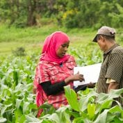fighting poverty means helping smallholder farmers like these ones who survey crops on farm
