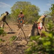 Group of people working on tilling their land