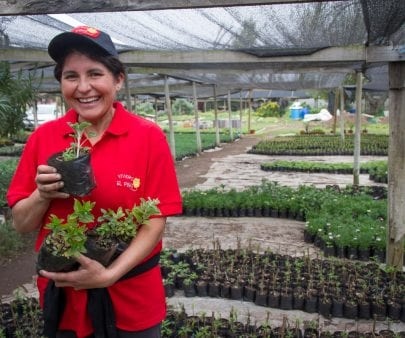 woman in plant nursery in Chile
