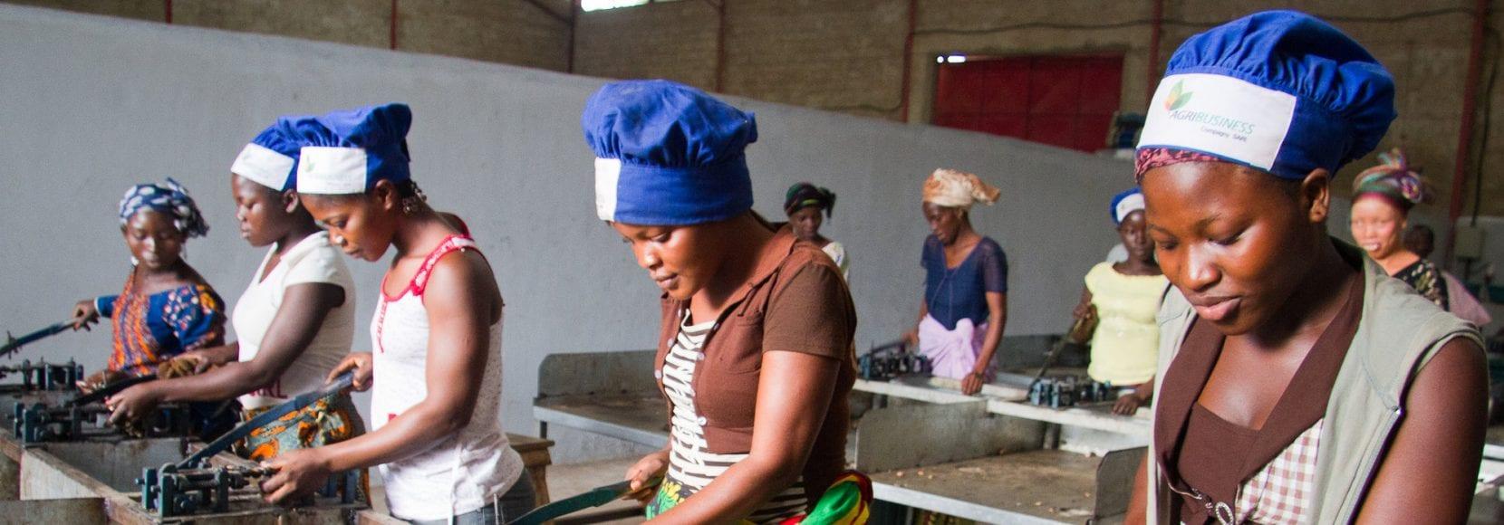 Women deshelling cashews, Agri-Business Company cashew factory, Touba, C™te d'Ivoire. Photo © Nile Sprague Women deshelling cashews, Agri-Business Company cashew factory, Touba, Côte d'Ivoire. Photo © Nile Sprague
