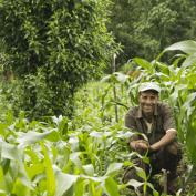 Smiling man sitting in his farm
