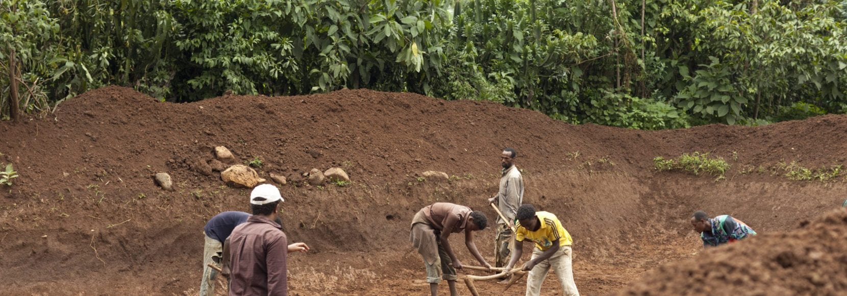 Coffee farmers in Ethiopia