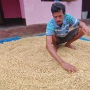 Palika Raju is a coffee farmer in Andhra Pradesh, India