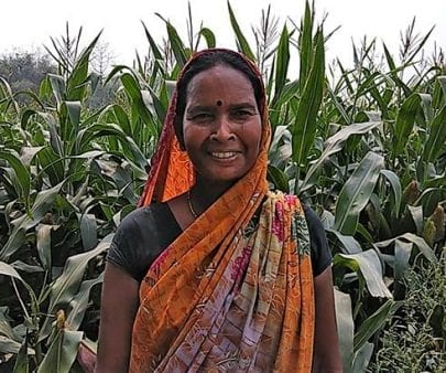 Smallholder farmer in India