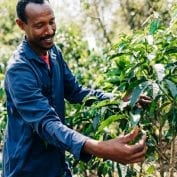 Adugna Feye is a coffee farmer in western Ethiopia